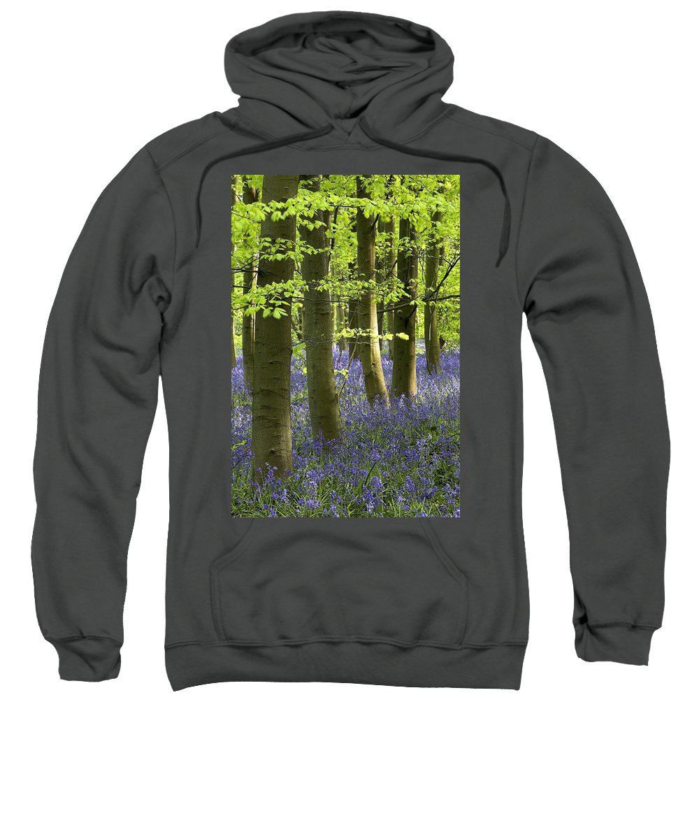 Bluebell Sweatshirt featuring the photograph Bluebells In The Woods by Chris Upton