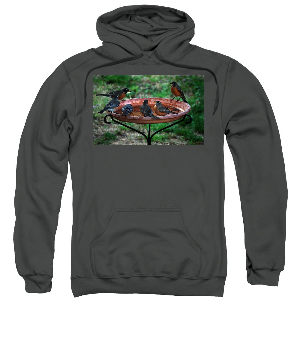 Robin Sweatshirt featuring the photograph Boys At The Bath by Skip Willits