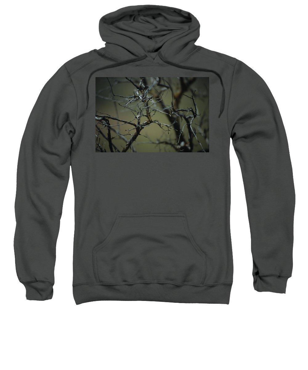 Branches Sweatshirt featuring the photograph Branches by One Rude Dawg Orcutt