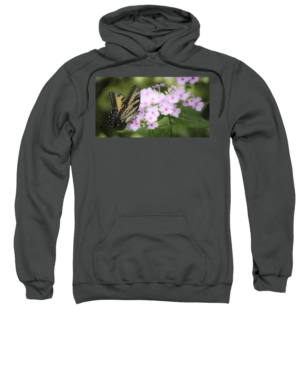 Phlox Sweatshirt featuring the photograph Butterfly Dreams by Teresa Mucha