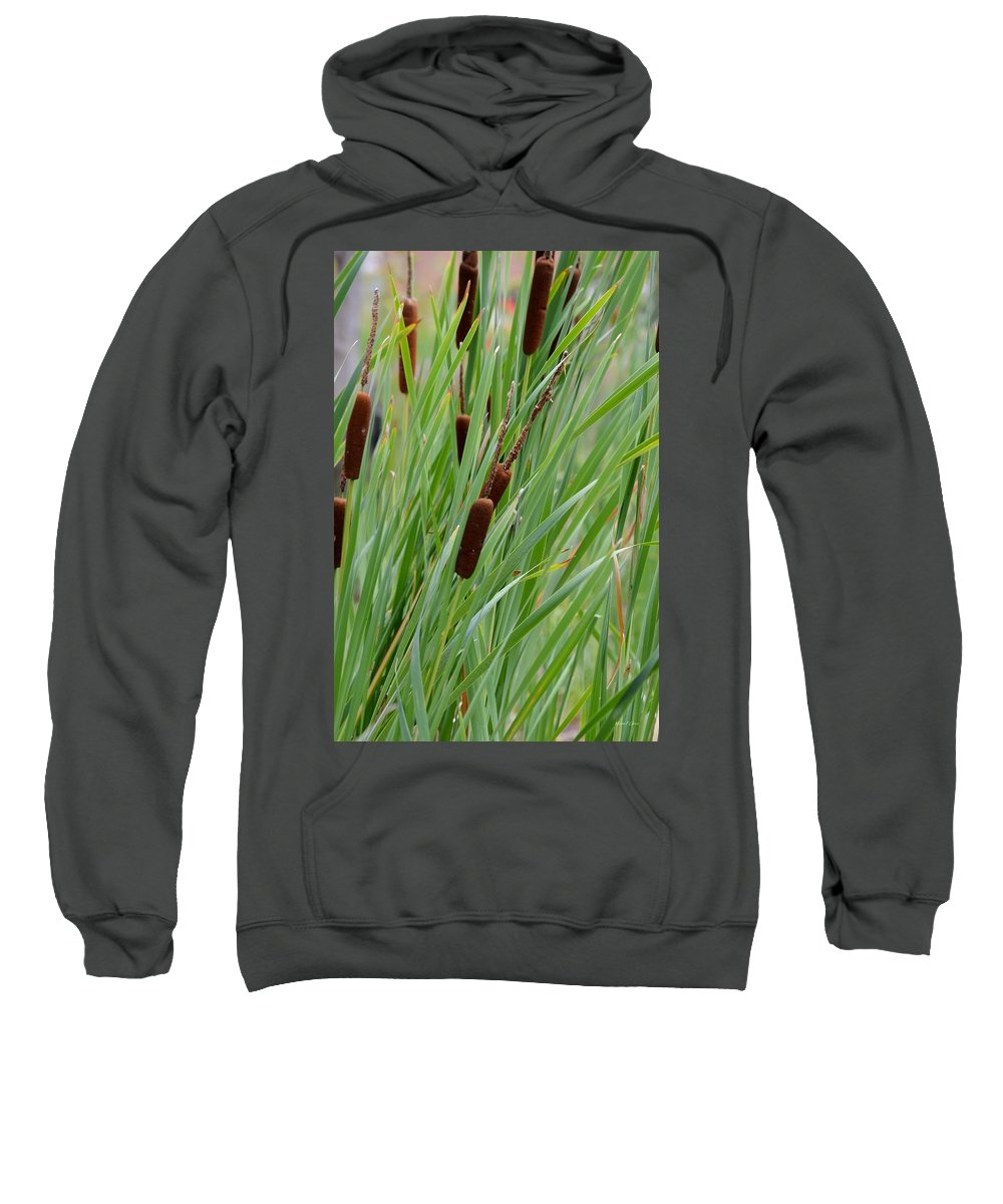Cattails Sweatshirt featuring the photograph Cattails by Maria Urso