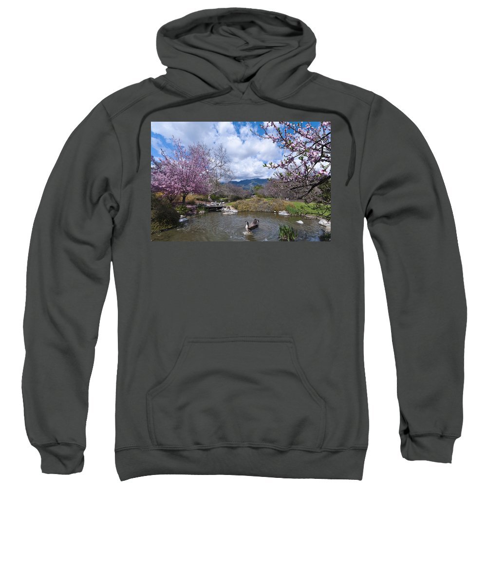 Arboretum Sweatshirt featuring the photograph Celebrating Spring by Mike Herdering