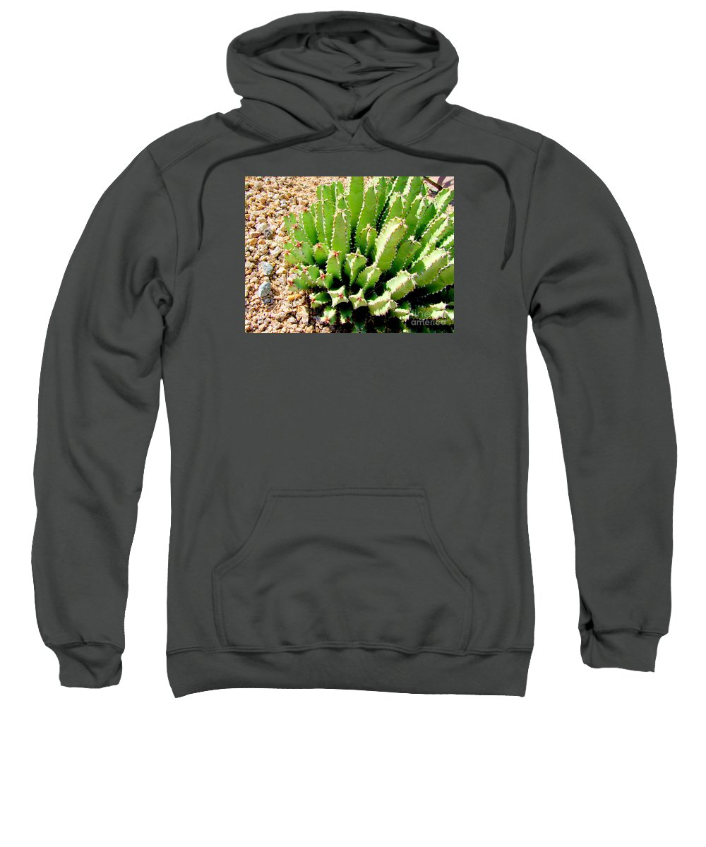 Cactus Sweatshirt featuring the photograph Cereus Peruvianis Cactus by Mary Deal