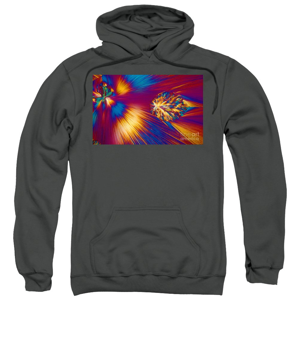 Chemistry Sweatshirt featuring the photograph Cholesterol Crystal by Michael W. Davidson