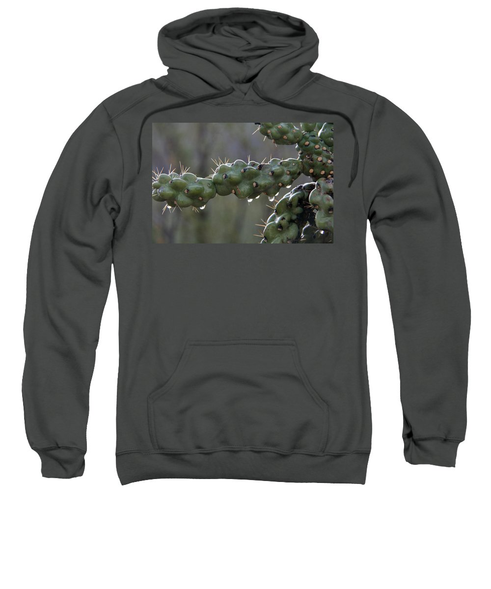Cholla Sweatshirt featuring the photograph Cholla Cactus In The Rain by Elizabeth Rose