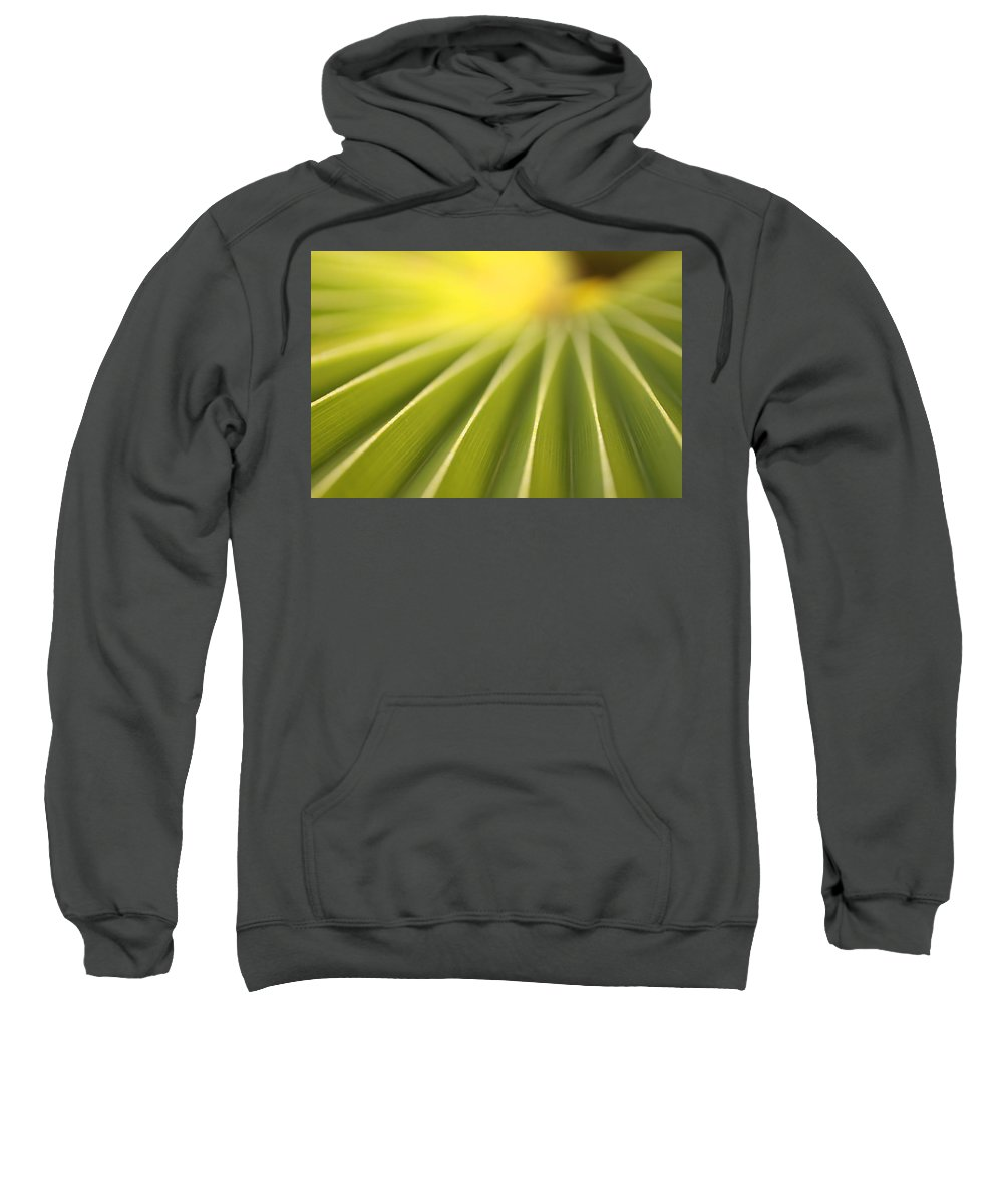 Light Sweatshirt featuring the photograph Close Up Of A Plant On The Island by Robert Postma