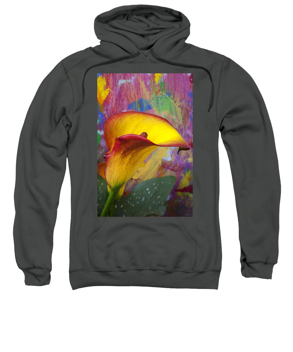 Yellow Sweatshirt featuring the photograph Colorful Calla Lily by Garry Gay