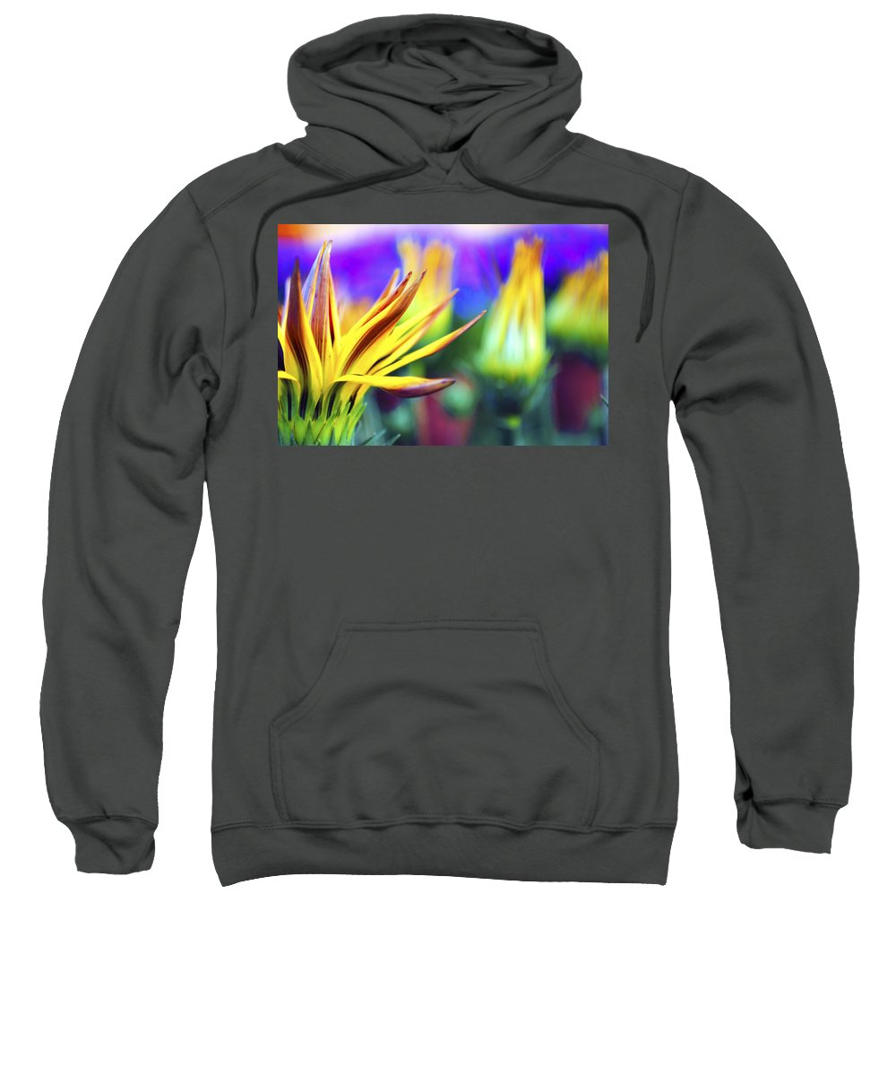 Colorful Sweatshirt featuring the photograph Colorful Flowers by Sumit Mehndiratta