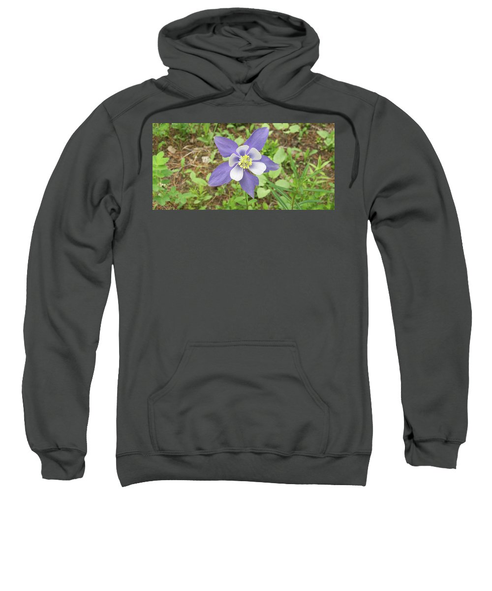 Flower Sweatshirt featuring the photograph Columbine In The Woods by Greg Plamp