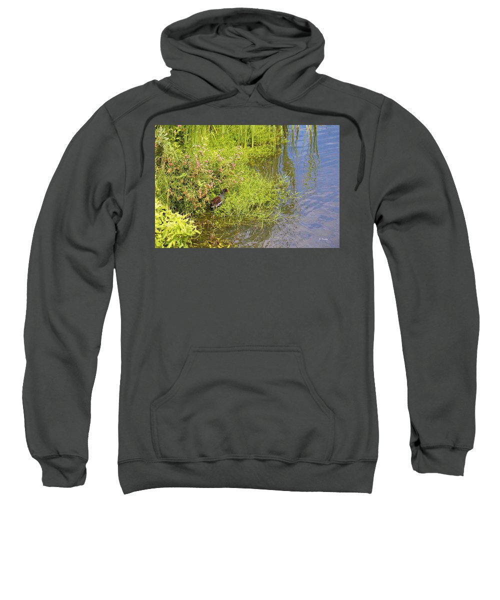 Roena King Sweatshirt featuring the photograph Common Moorhen At The Waters Edge by Roena King