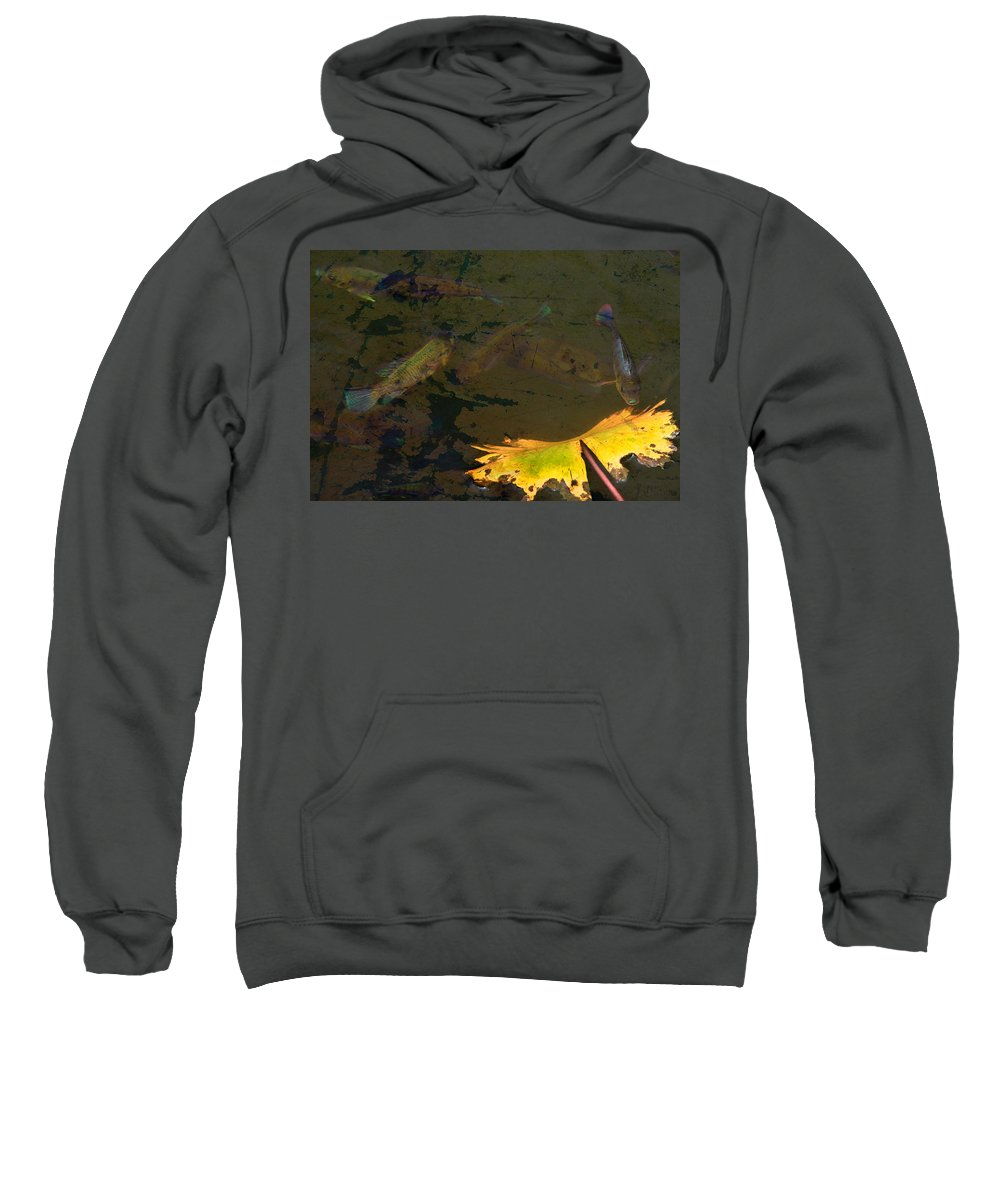 Fish Sweatshirt featuring the photograph Conferring With The Yellow by Naoki Takyo