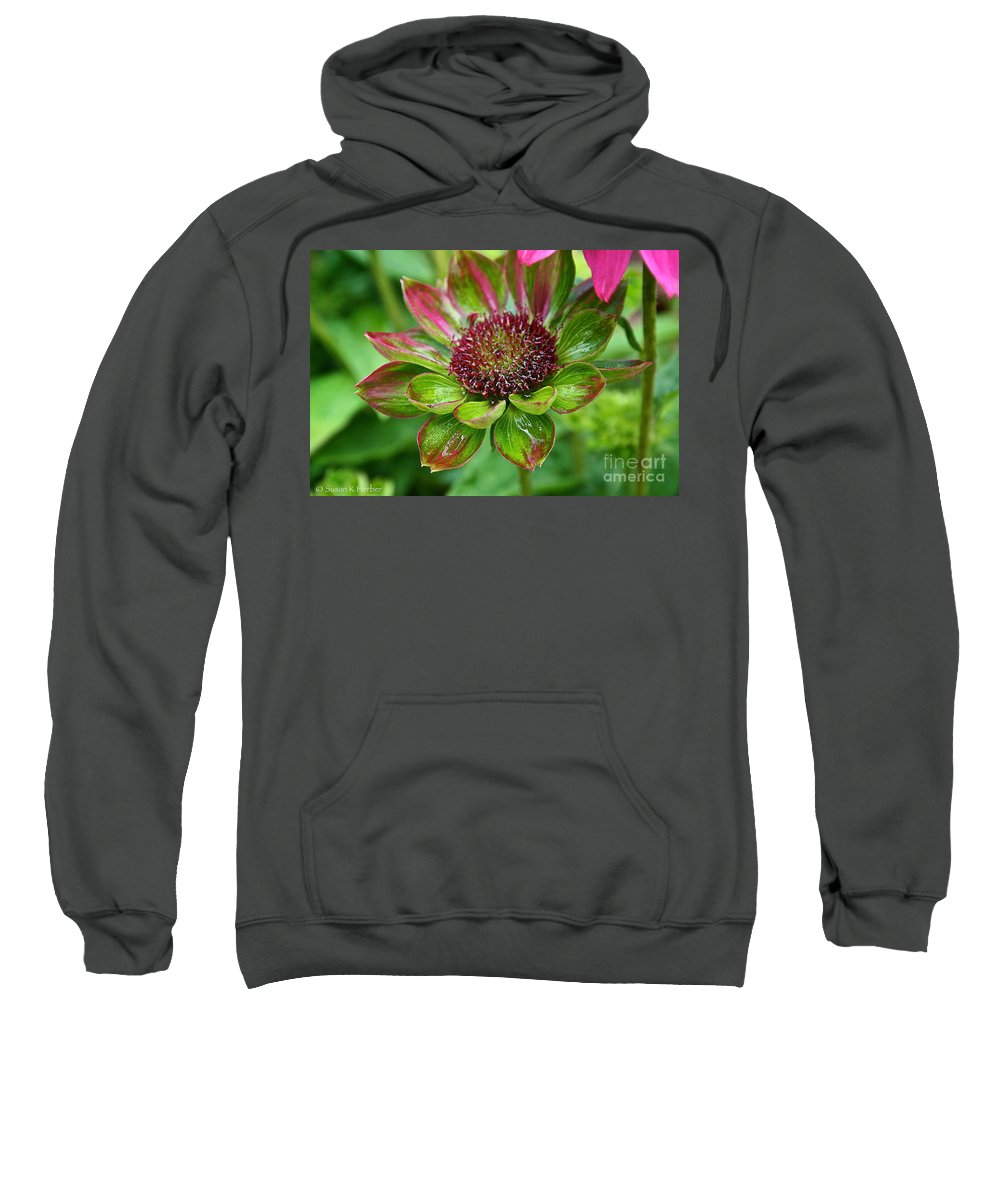 Plant Sweatshirt featuring the photograph Confused Cone Flower by Susan Herber