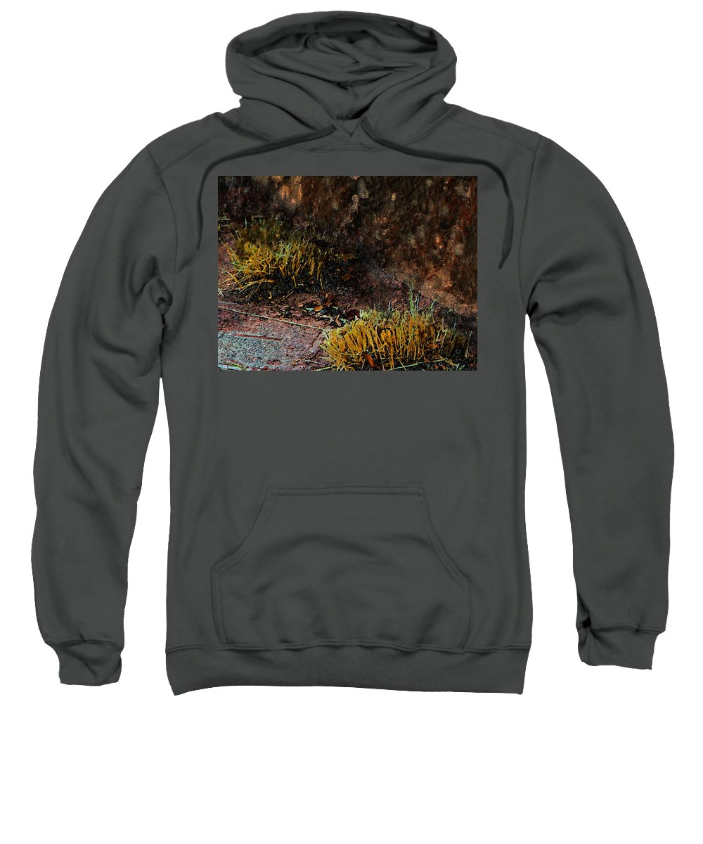 Abstract Sweatshirt featuring the photograph Copper And Gold by Lenore Senior