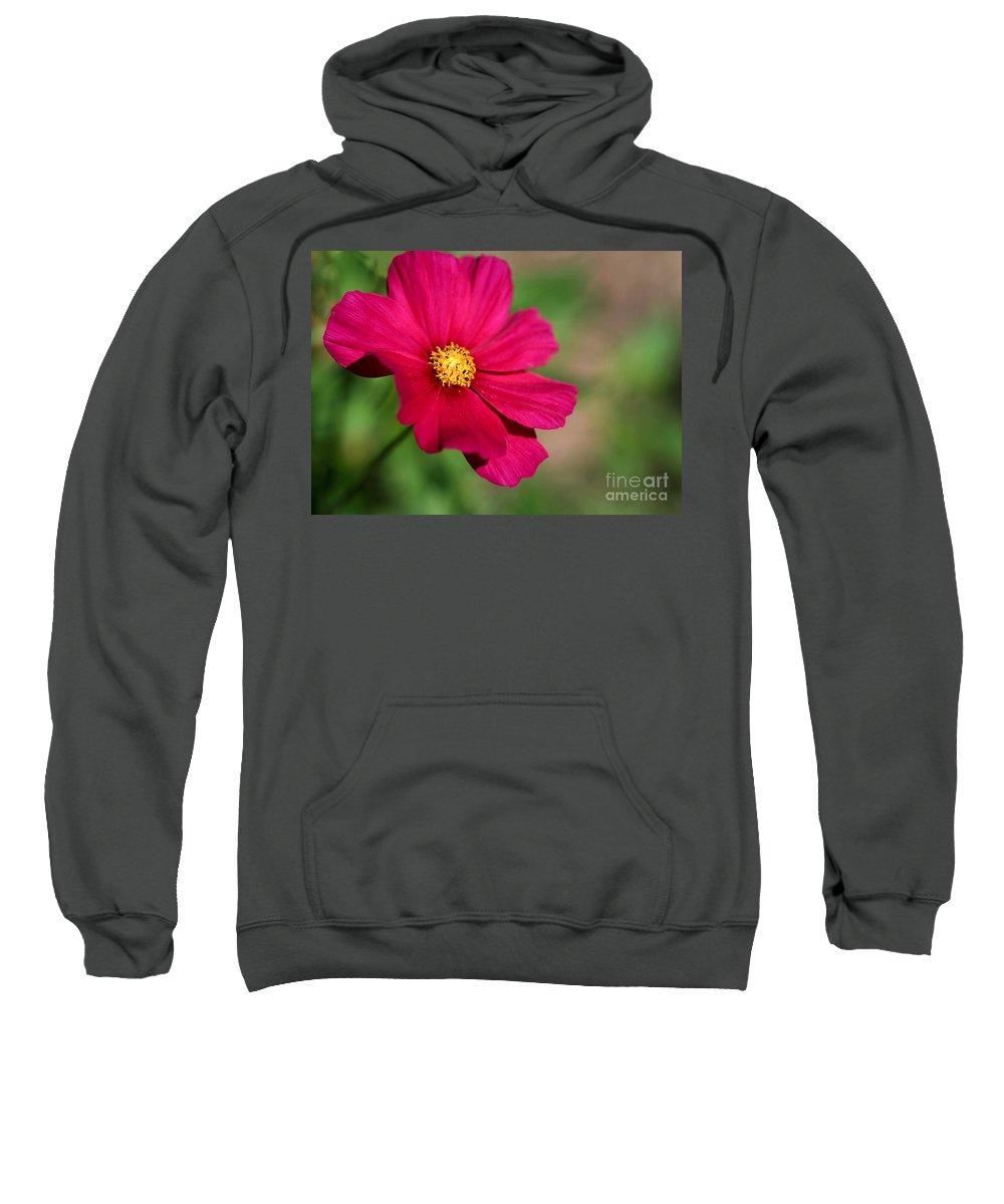 Macro Sweatshirt featuring the photograph Cosmopolitan by Sabrina L Ryan