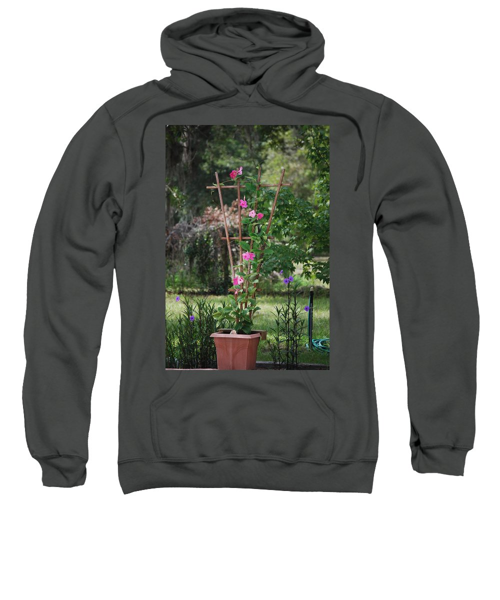 Flower Sweatshirt featuring the photograph Country Garden by Judy Hall-Folde