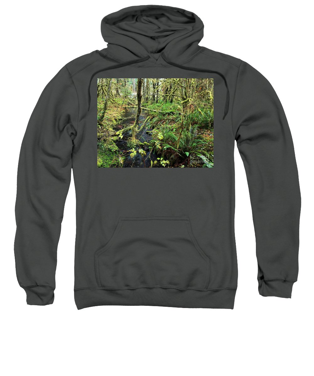 Hoh Rainforest Sweatshirt featuring the photograph Creek In The Rain Forest by Adam Jewell
