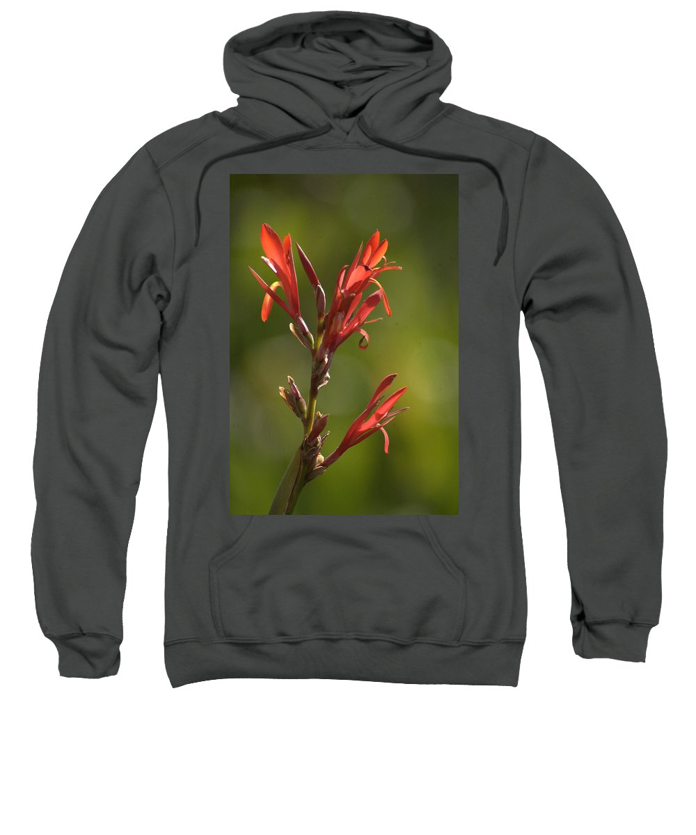 Flower Sweatshirt featuring the photograph Crimson On Emerald by Tracey Beer