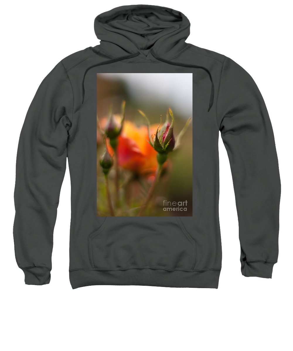 Flower Sweatshirt featuring the photograph Crisp New Buds by Mike Reid