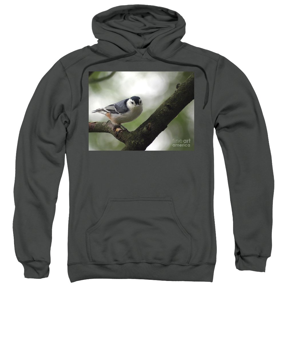 Birds Sweatshirt featuring the photograph Cute Face Nuthatch by Living Color Photography Lorraine Lynch