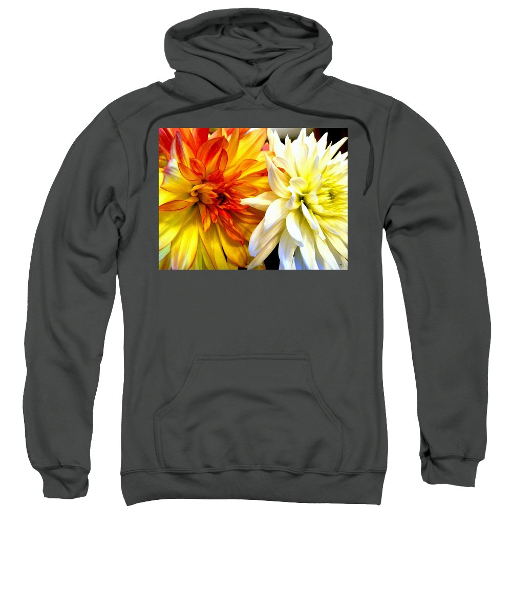 Dahlia Days Sweatshirt featuring the photograph Dahlia Days by Will Borden