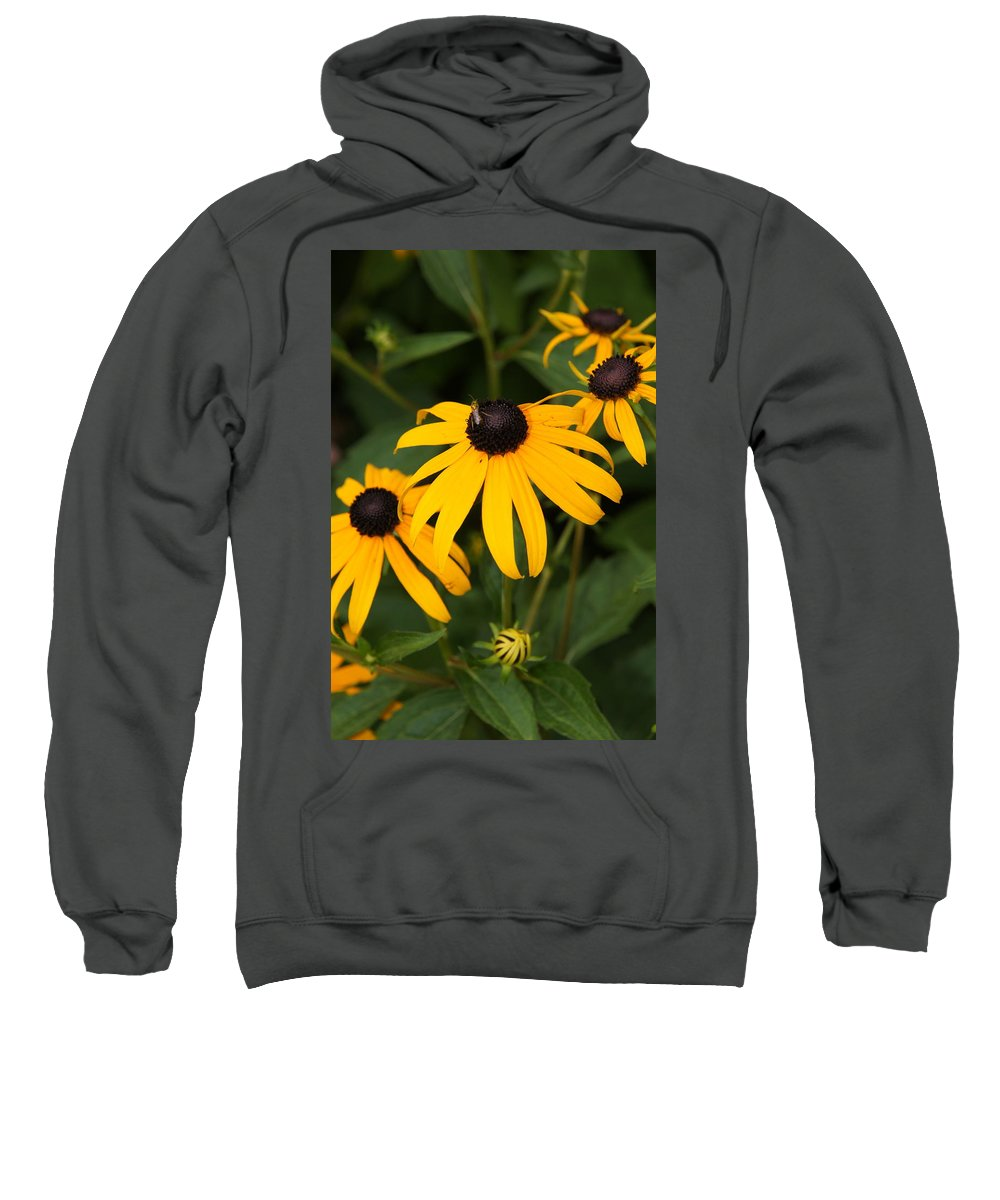 Daisy Sweatshirt featuring the photograph Daisies by Megan Cohen