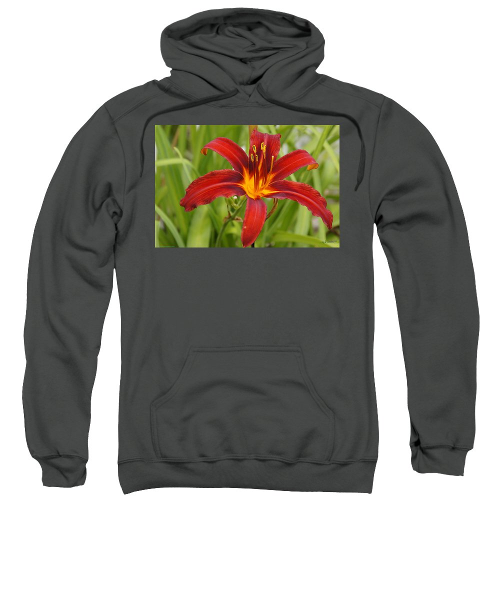 Day Lilly Sweatshirt featuring the photograph Day Lilly In Diffused Daylight by Mick Anderson