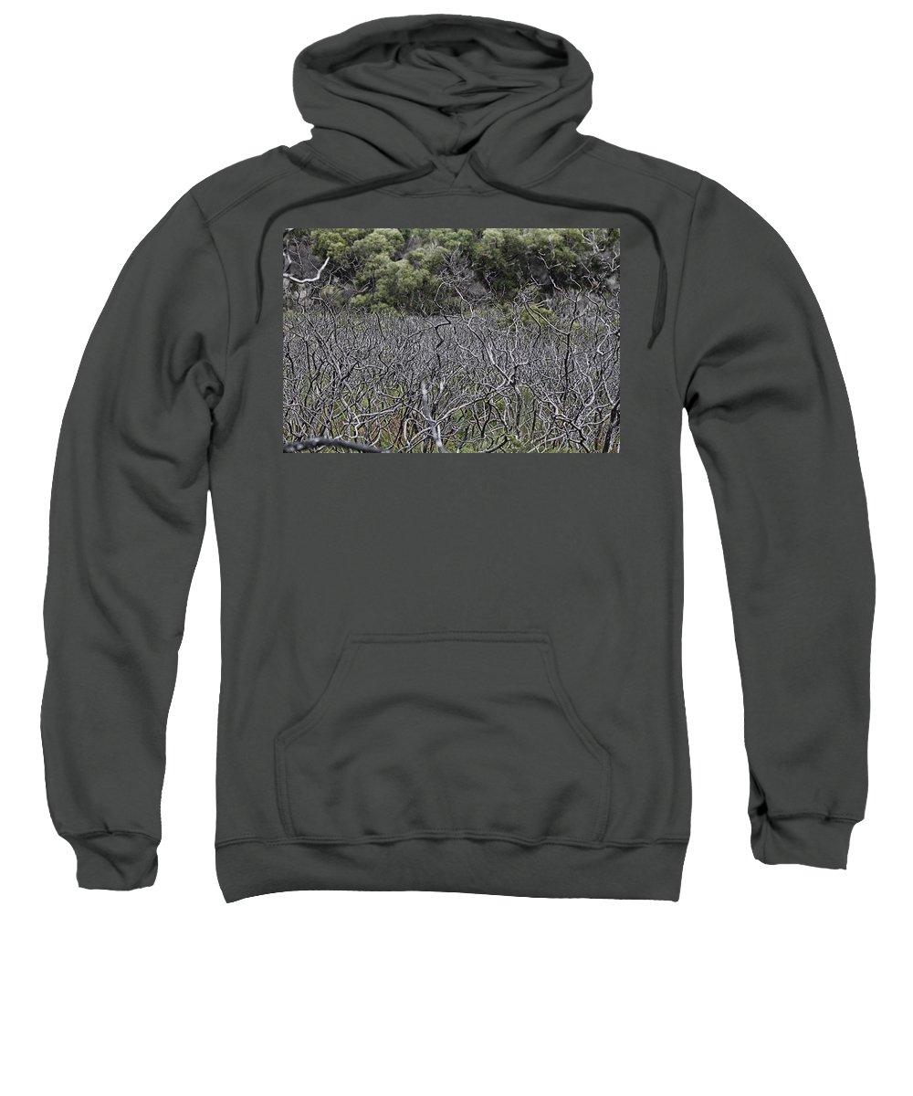 Dead Sweatshirt featuring the photograph Dead Tree Garden by Douglas Barnard