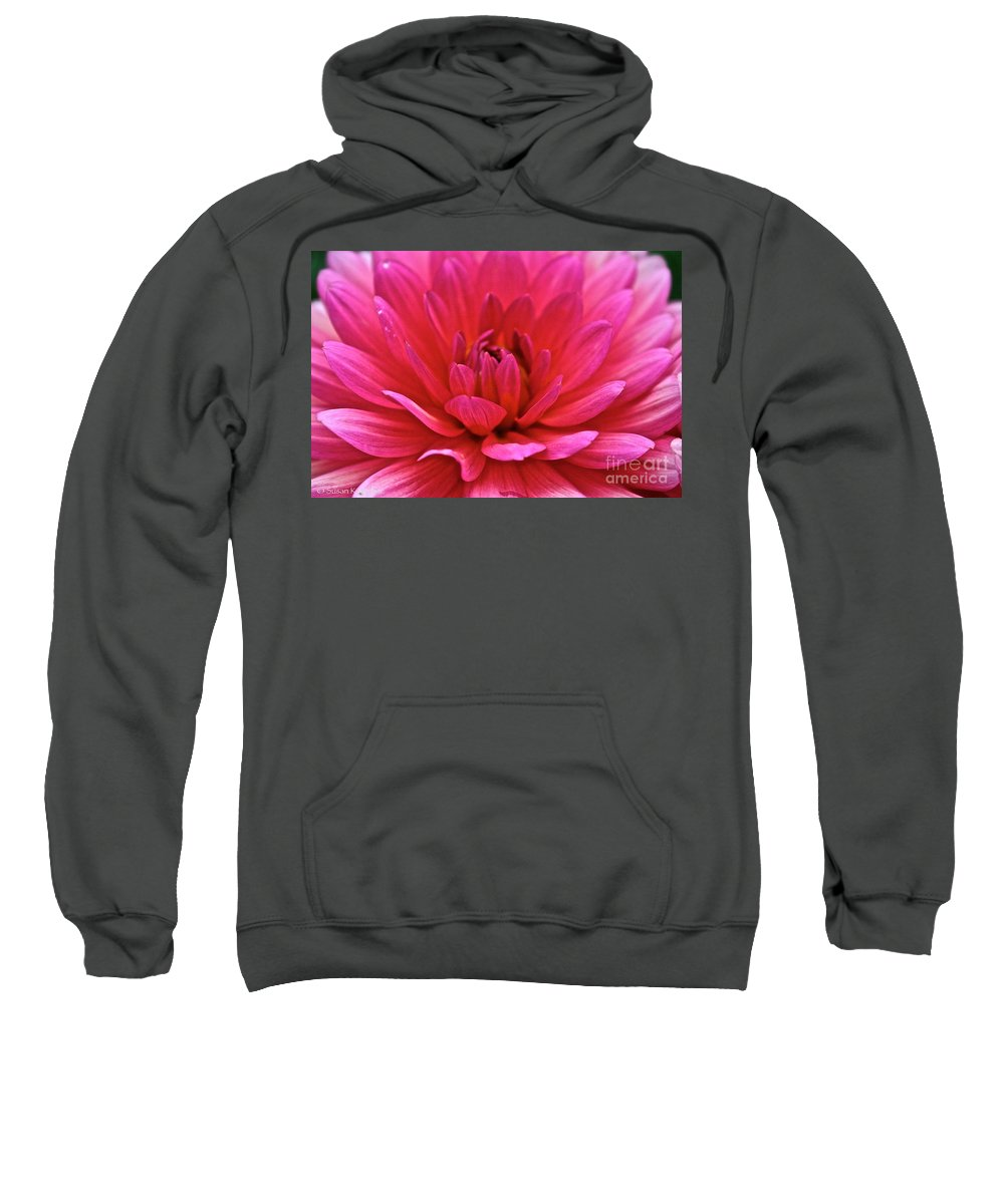 Floral Sweatshirt featuring the photograph Decadent Dahlia by Susan Herber