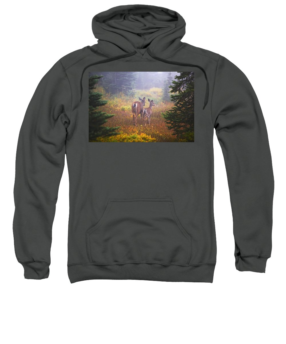 Cervidae Sweatshirt featuring the photograph Deer In The Fog In Paradise Park In Mt by Craig Tuttle