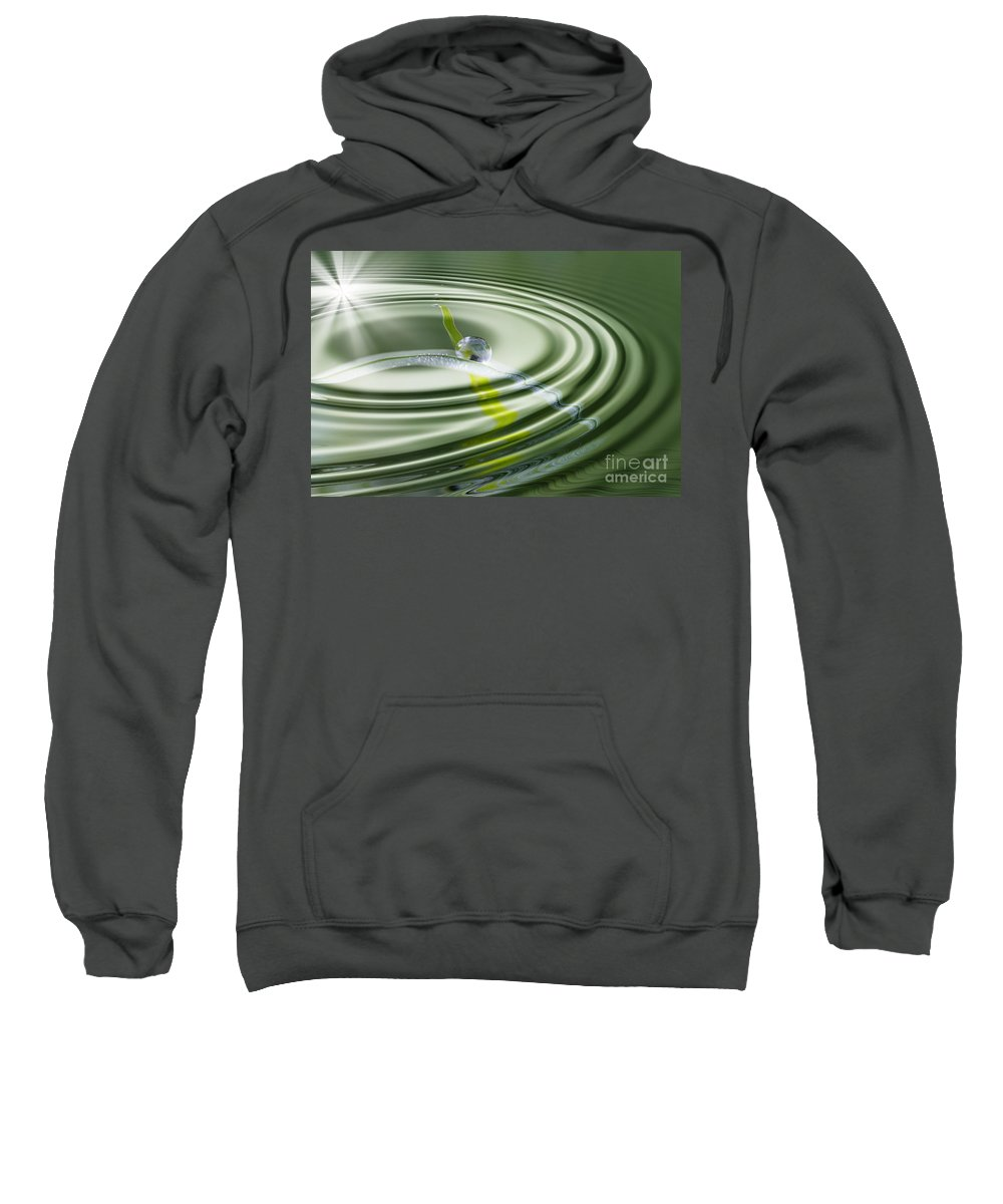 Grass Sweatshirt featuring the photograph Dew Bead On The Blade Of Grass by Michal Boubin