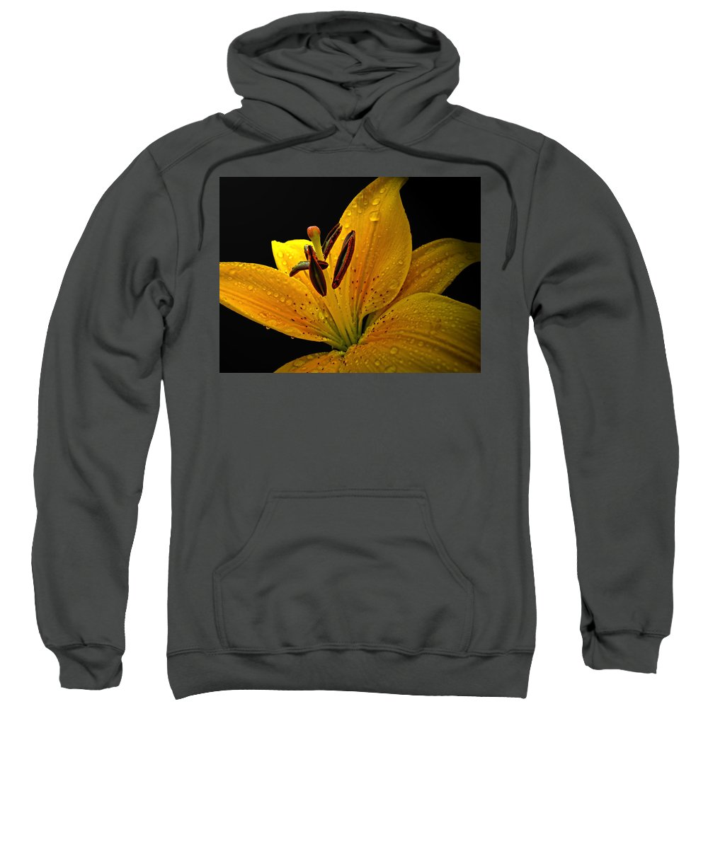 Nature Sweatshirt featuring the photograph Dew On The Daylily by Debbie Portwood
