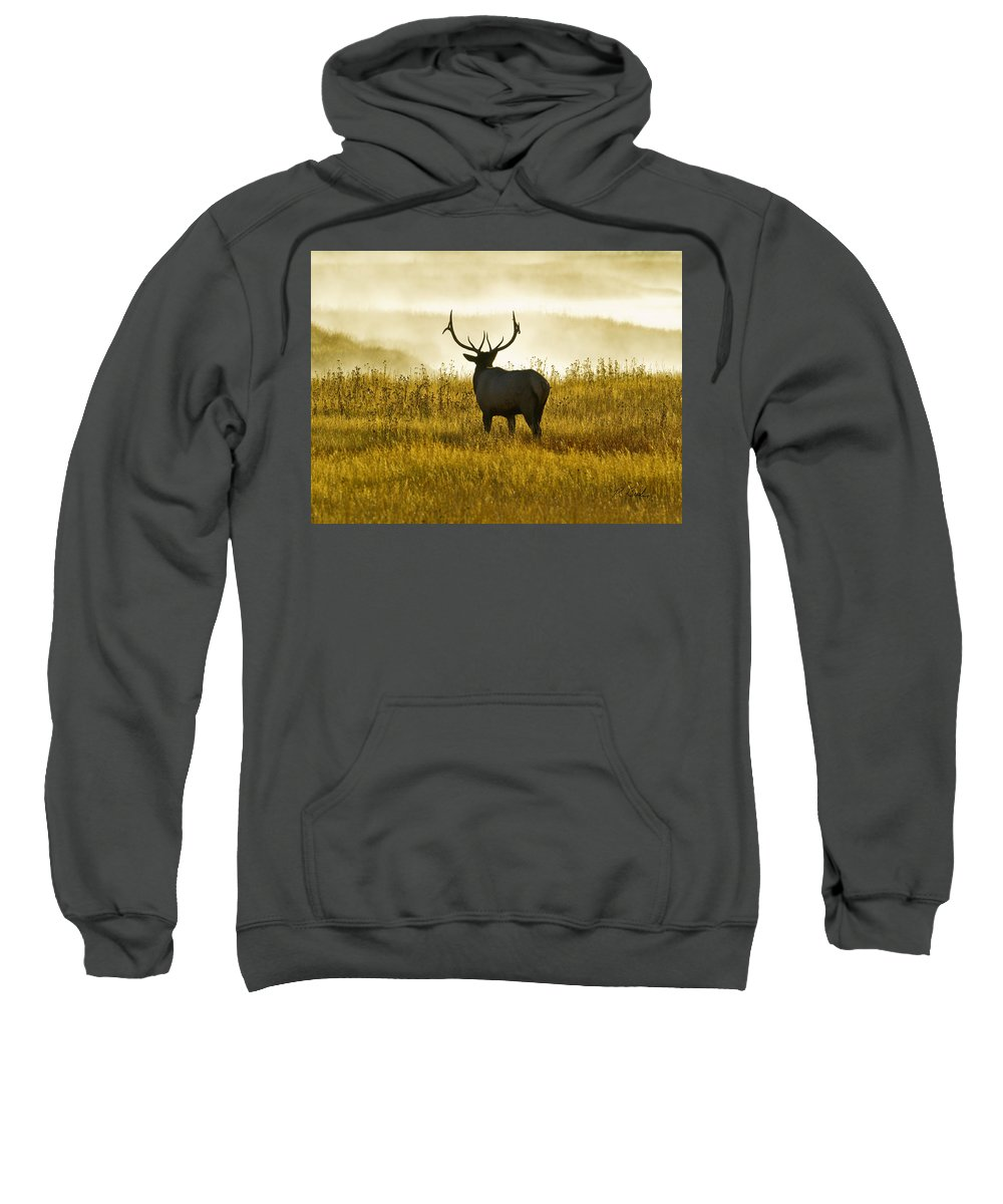 Fall 2011 Yellowstone Elk Mist Geyser Sweatshirt featuring the photograph Dusky Elk by R Breslaw
