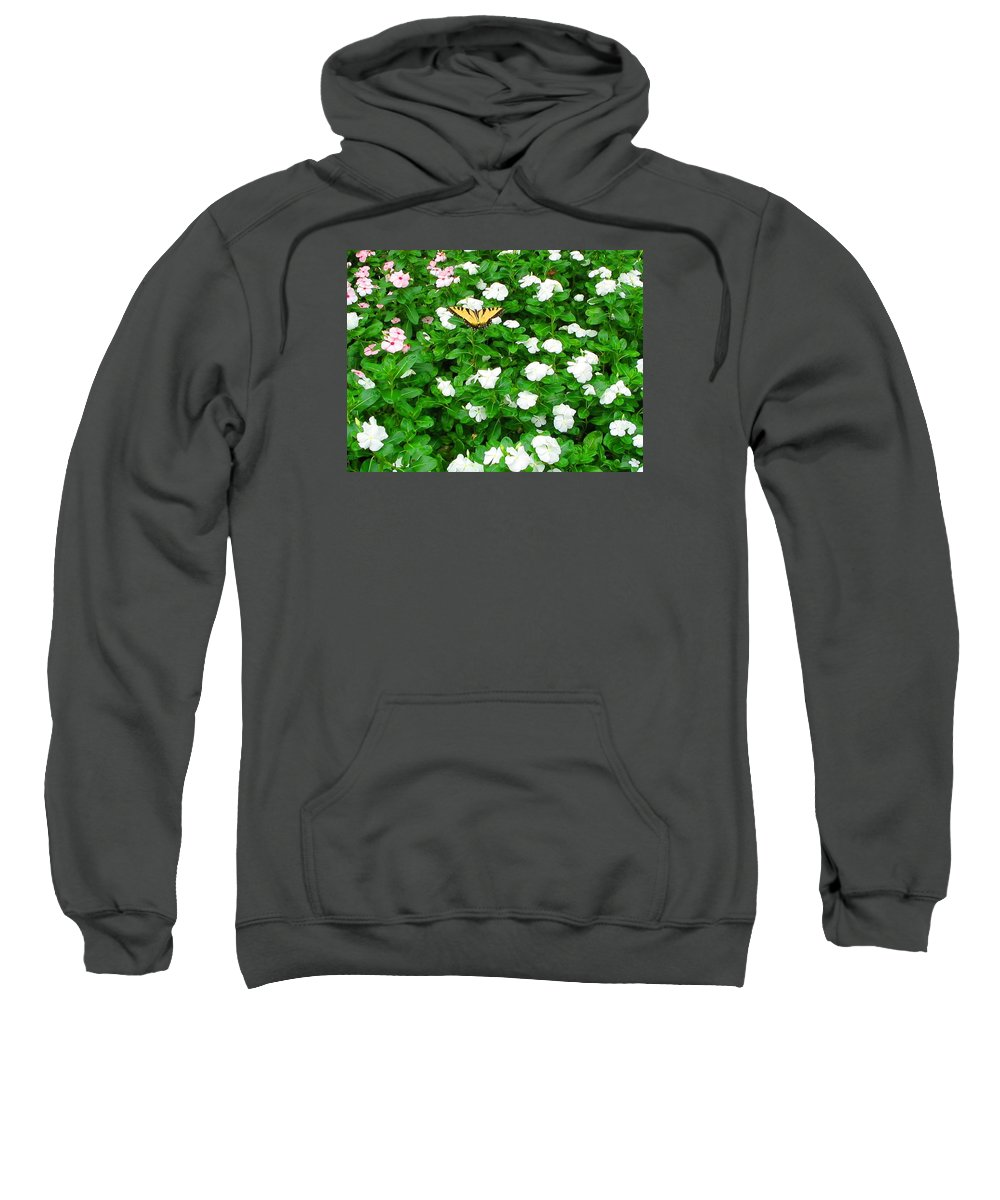 Butterfly Sweatshirt featuring the photograph Eastern Tiger Swallowtail by April Patterson