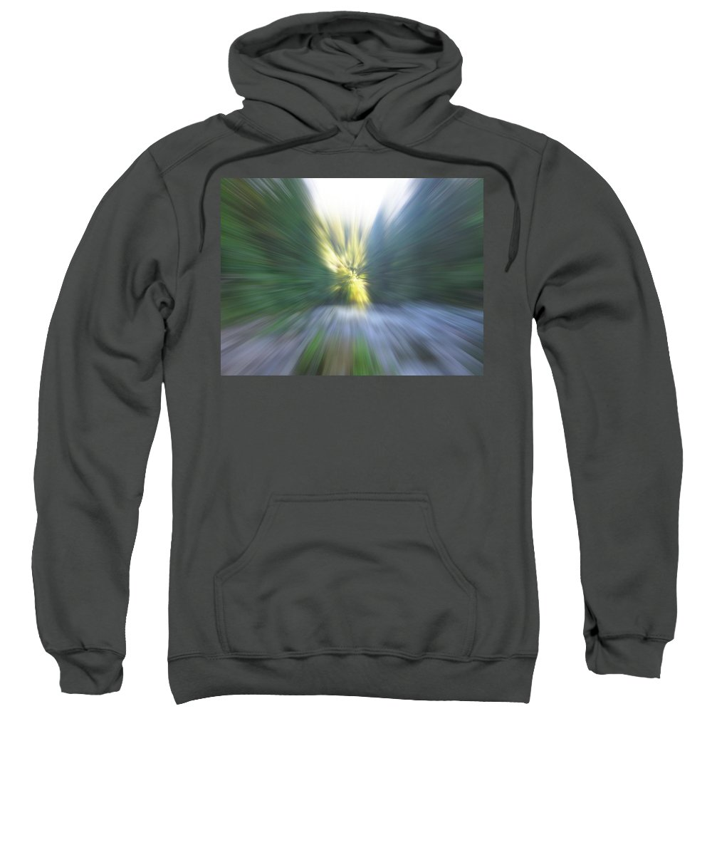 Sweatshirt featuring the photograph Elkhorn Abstract 2 by Linda Hutchins