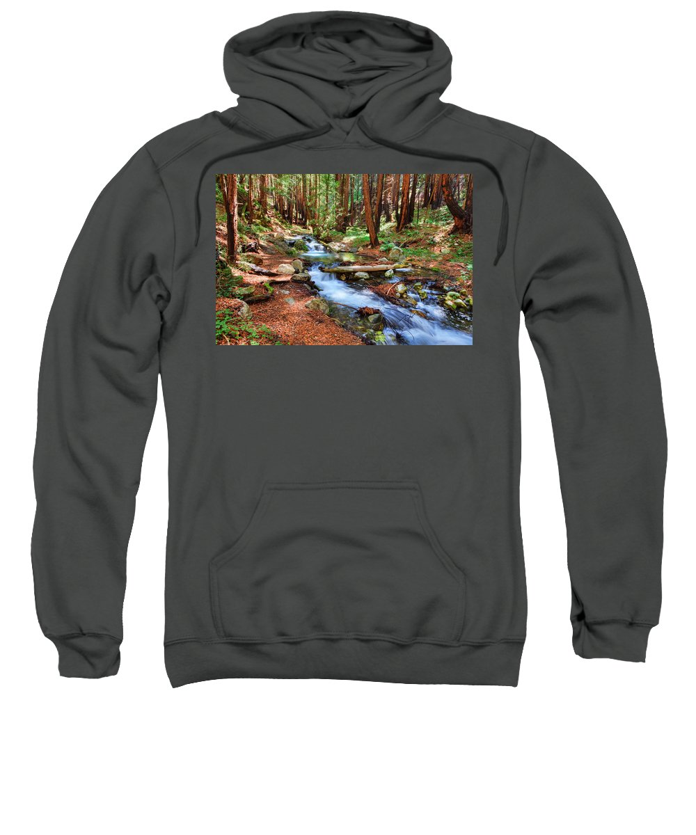 Stream Sweatshirt featuring the photograph Enchanted Forest by Beth Sargent