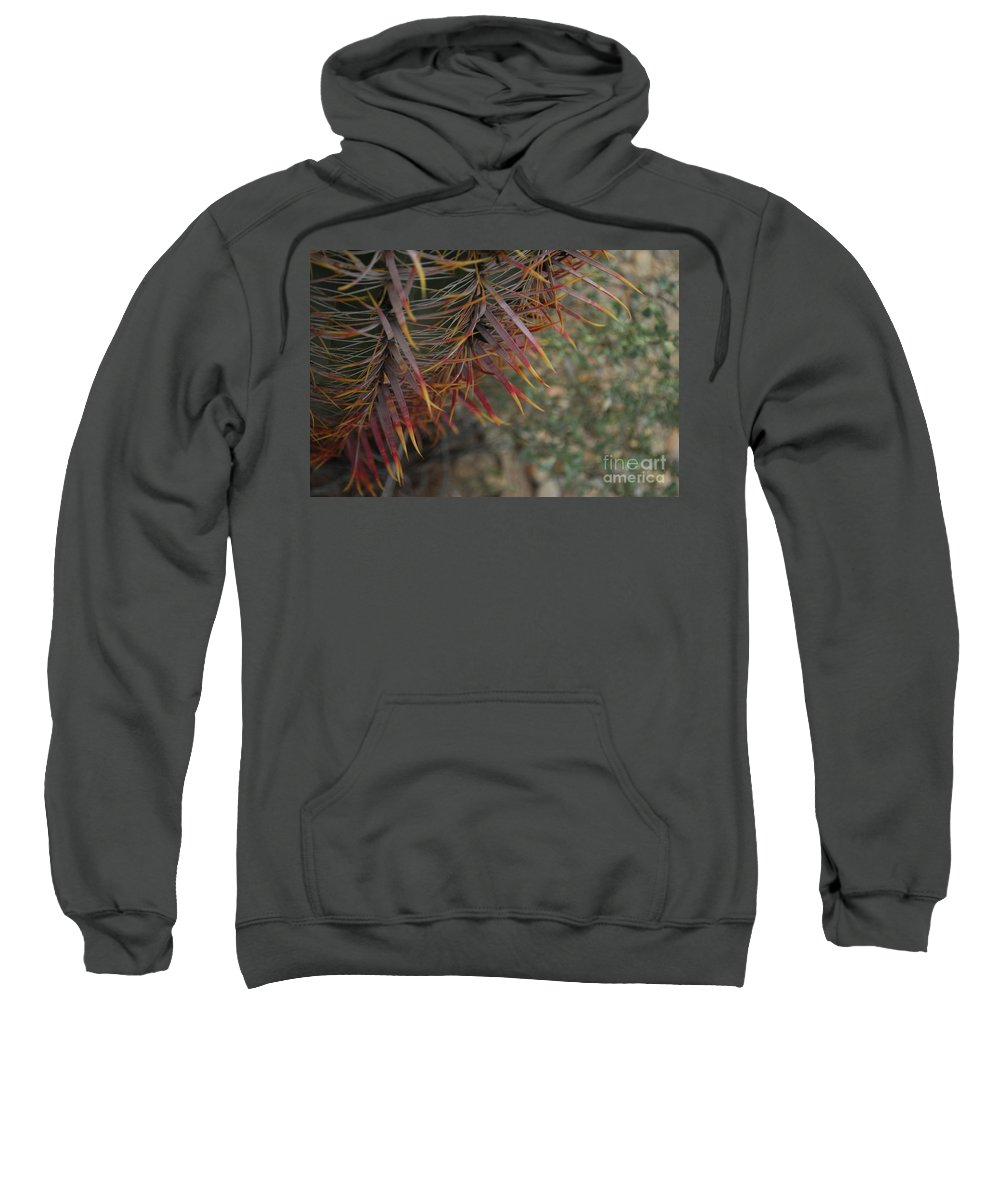 Barrel Sweatshirt featuring the photograph Expressions In Red by Heather Kirk