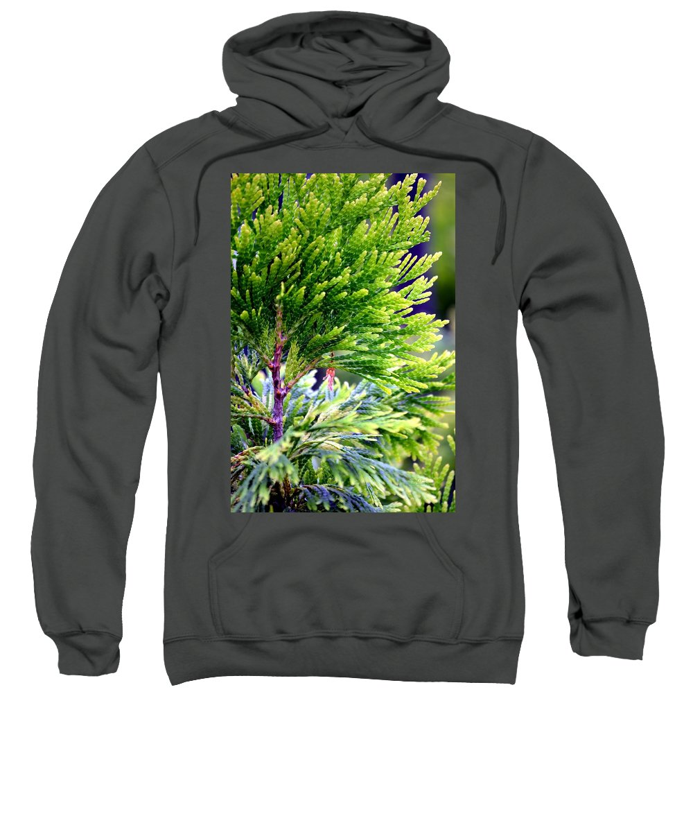 Extreme Sweatshirt featuring the photograph Extreme Shades Of Green by Maria Urso