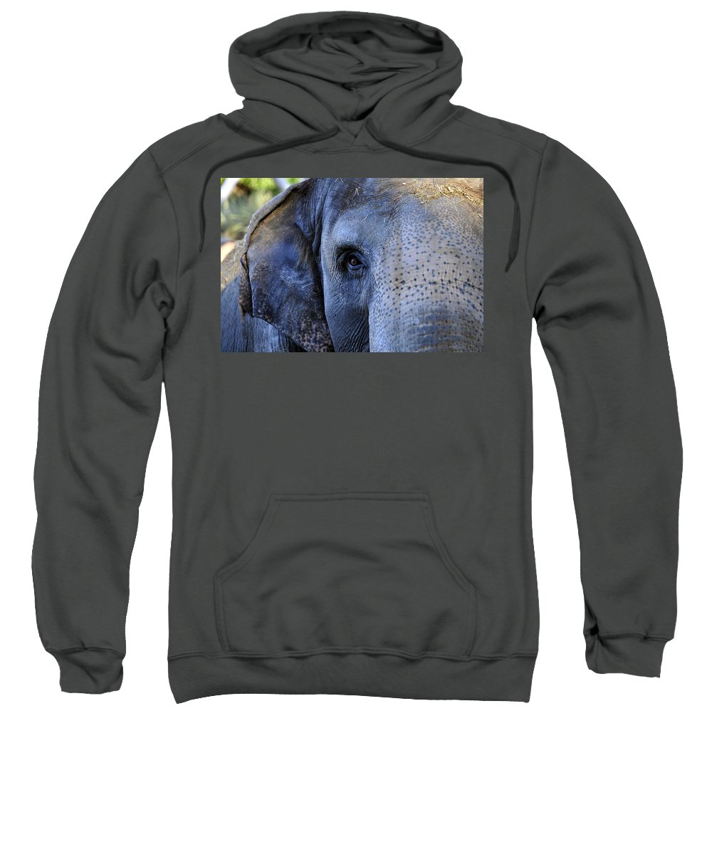 Fine Art Photography Sweatshirt featuring the photograph Eye Of The Elephant by David Lee Thompson