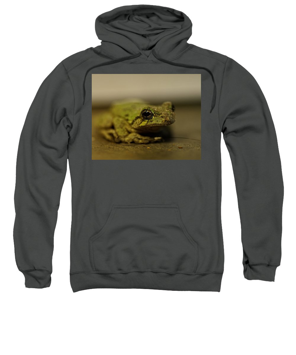 Frog Sweatshirt featuring the photograph Eye To Eye by Susan Capuano