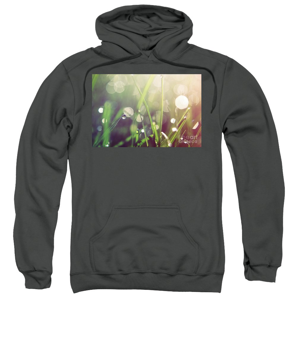 Nature Photographs Sweatshirt featuring the photograph Feeling Good by Aimelle