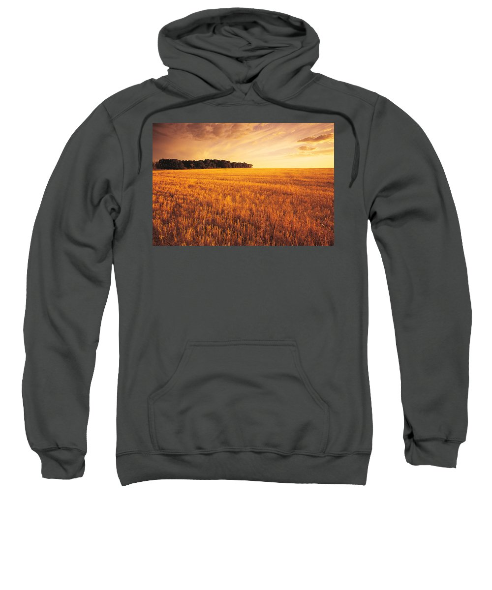 Colour Image Sweatshirt featuring the photograph Field Of Grain Stubble Near St by Dave Reede