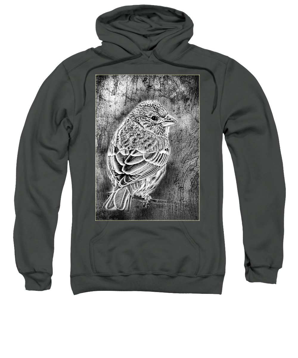 Nature Sweatshirt featuring the photograph Finch Grungy Black And White by Debbie Portwood