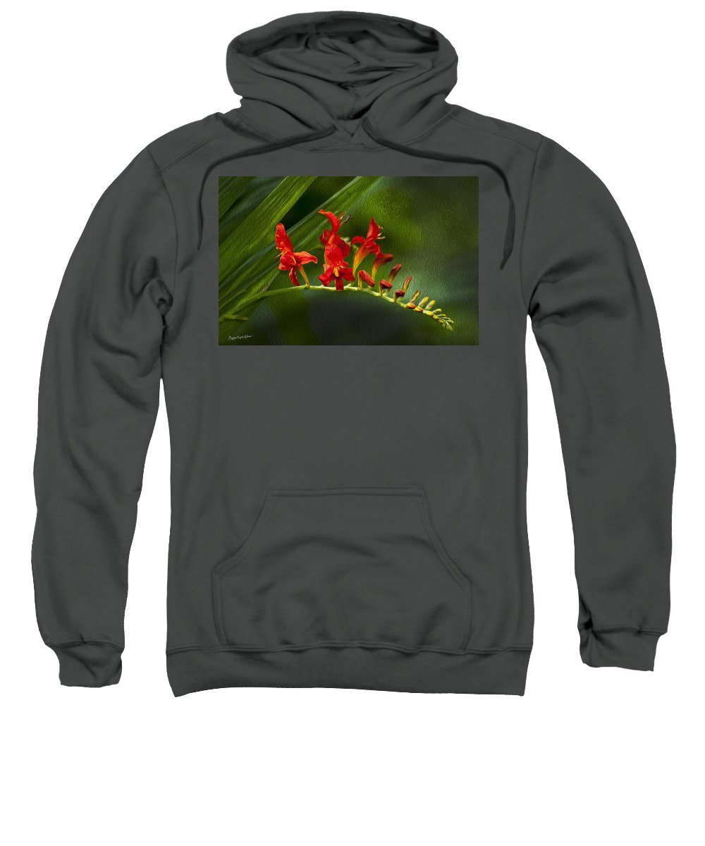Red Sweatshirt featuring the photograph Fire In The Garden by Maggie Magee Molino