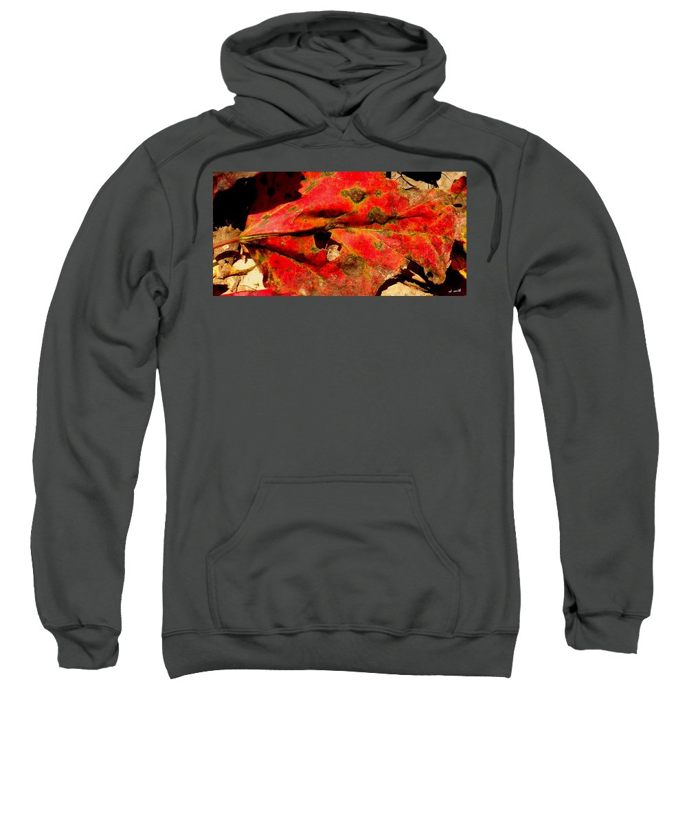 Firecracker Sweatshirt featuring the photograph Firecracker by Ed Smith