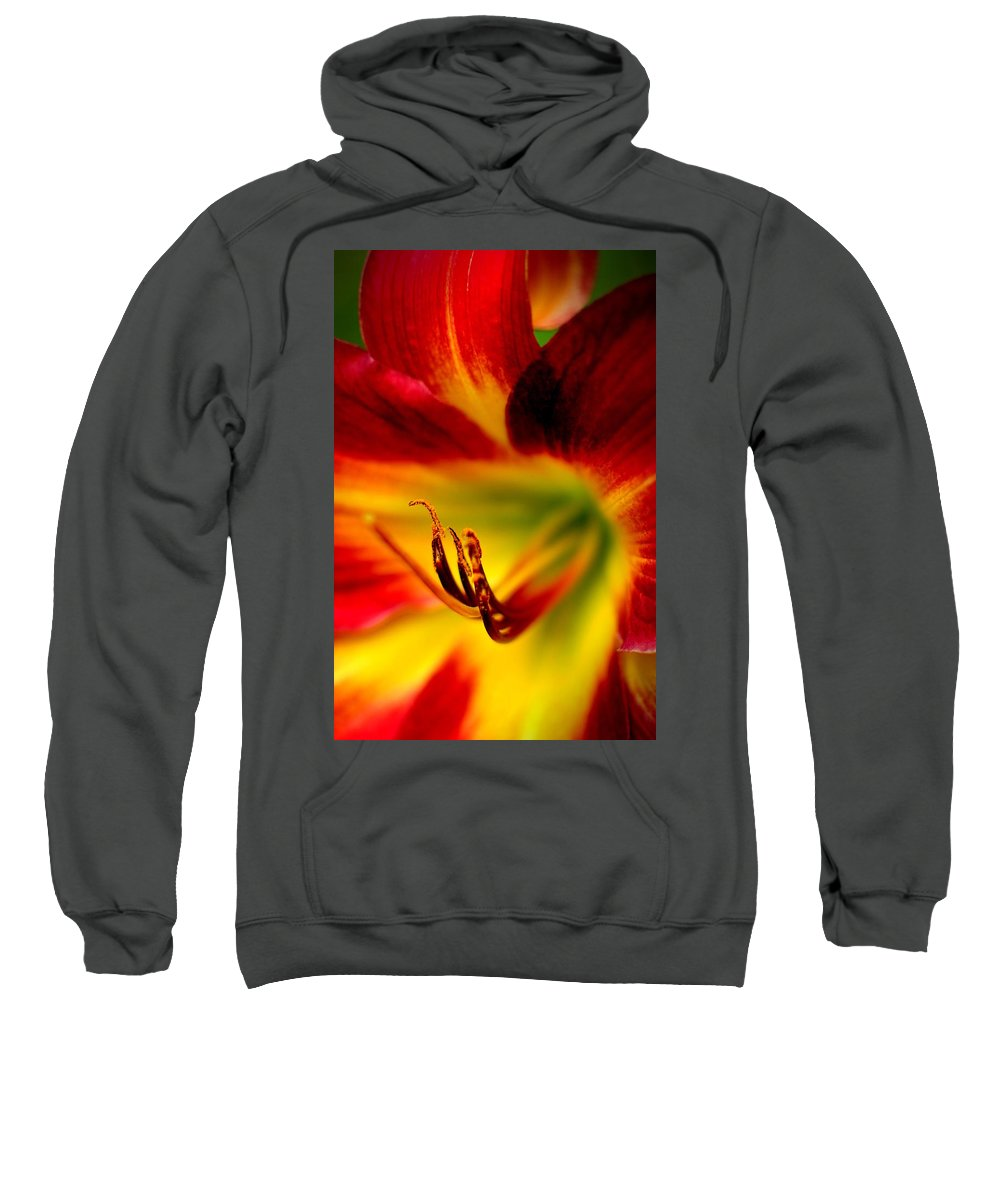 Intense Sweatshirt featuring the photograph Floral Macro Of A Blossom by Floyd Menezes