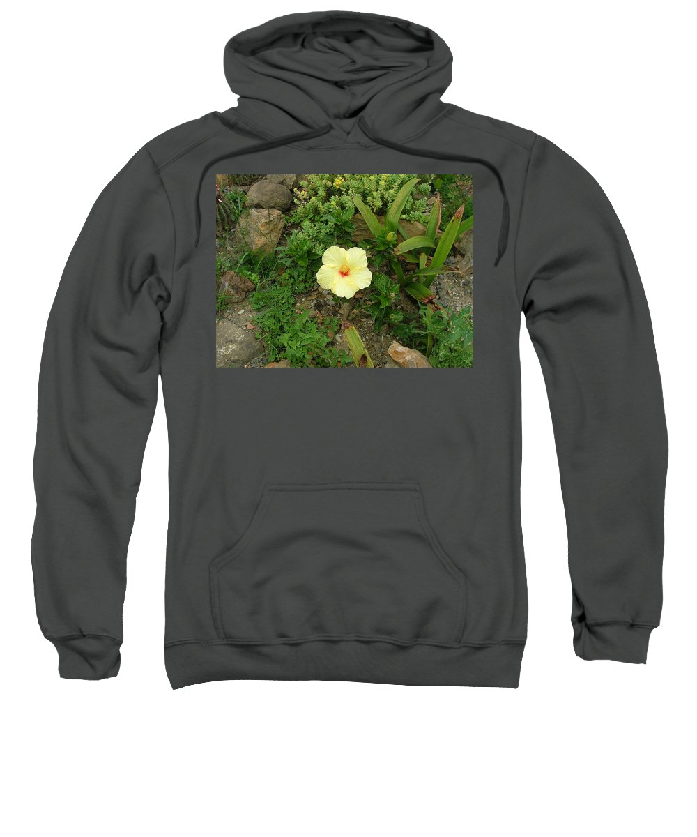 Landscape Sweatshirt featuring the photograph Flower In Yellow by Dennis Pintoski