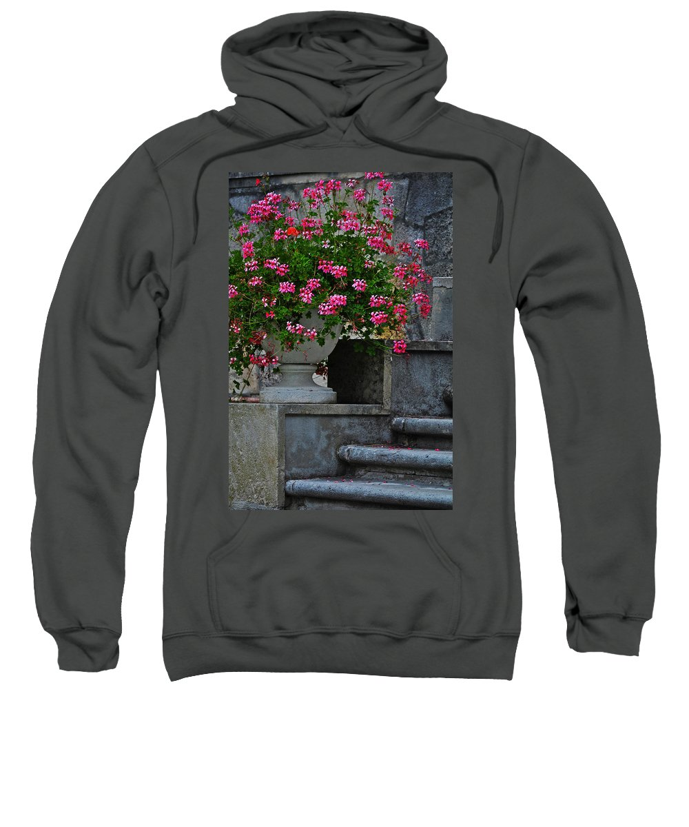 Flowers On The Steps Sweatshirt featuring the photograph Flowers On The Steps by Mary Machare