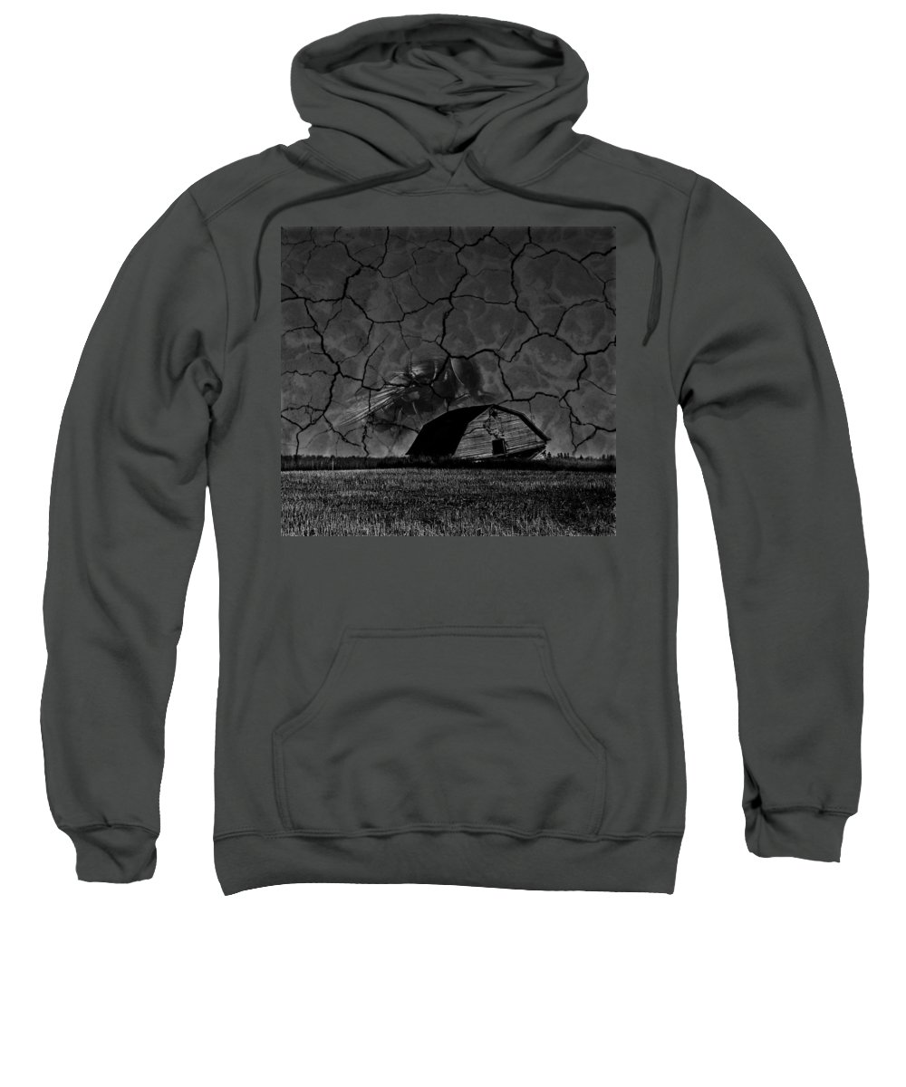 Window Sweatshirt featuring the photograph Fly On The Wall by The Artist Project