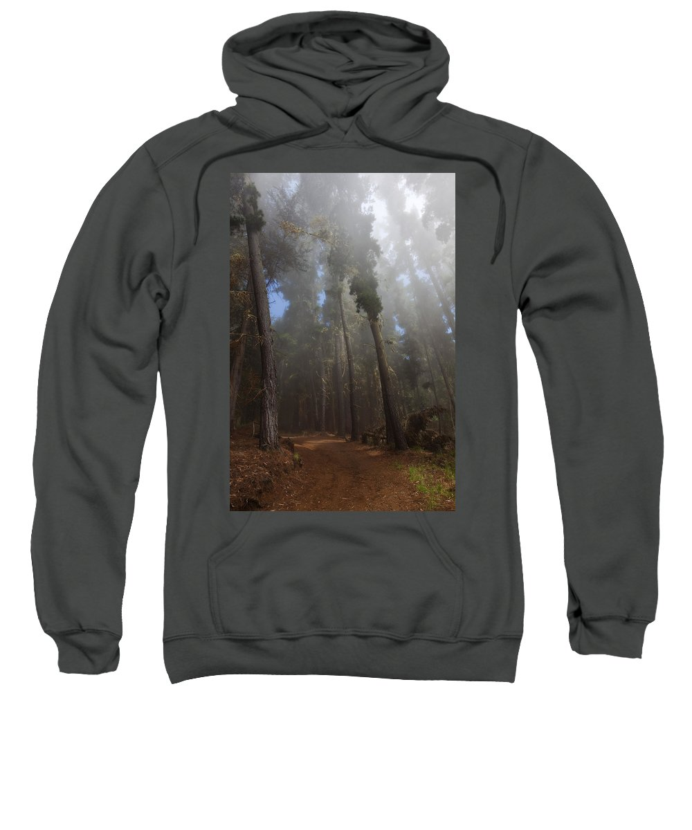 Back Sweatshirt featuring the photograph Foggy Poli Poli by Jenna Szerlag