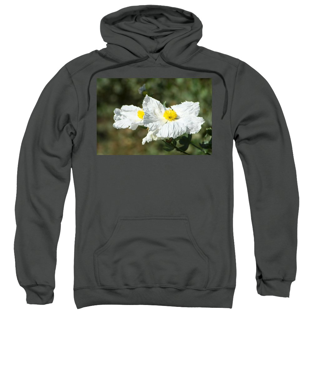 Wilflife Sweatshirt featuring the photograph Fried Egg Flowers by Diana Haronis